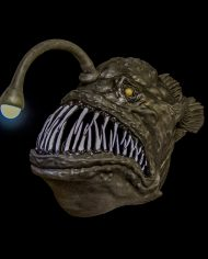 anglerfish (1)