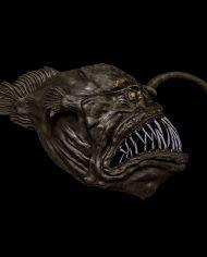 anglerfish (4)