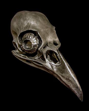 crow skull mask Black