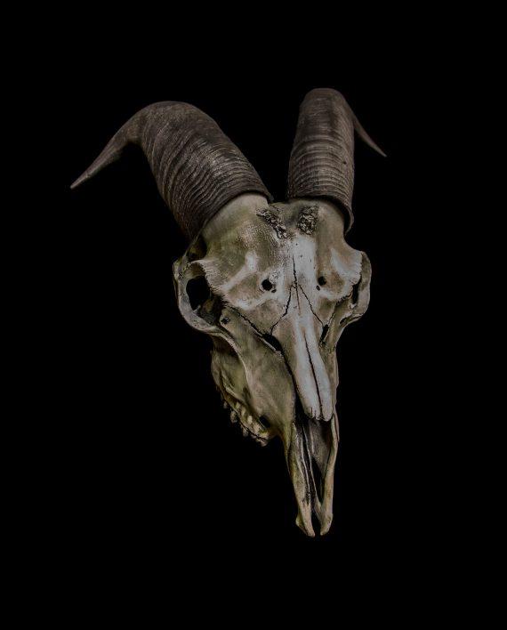 Goat Skull Baphomet Mask