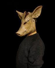 pig (4)