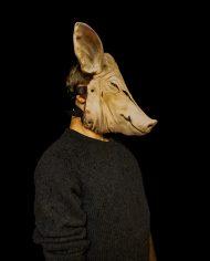 pig (5)