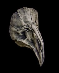 pestis plague doctor mask
